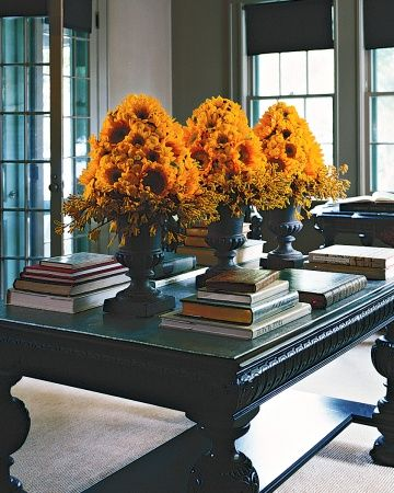 """Yellow Topiary Arrangement  three cones of floral foam with sunflowers and button chrysanthemums above """"cuffs"""" of fuzzy kangaroo paws (Anigozanthos). Their harvest golds will glow like lanterns above the black urns."""