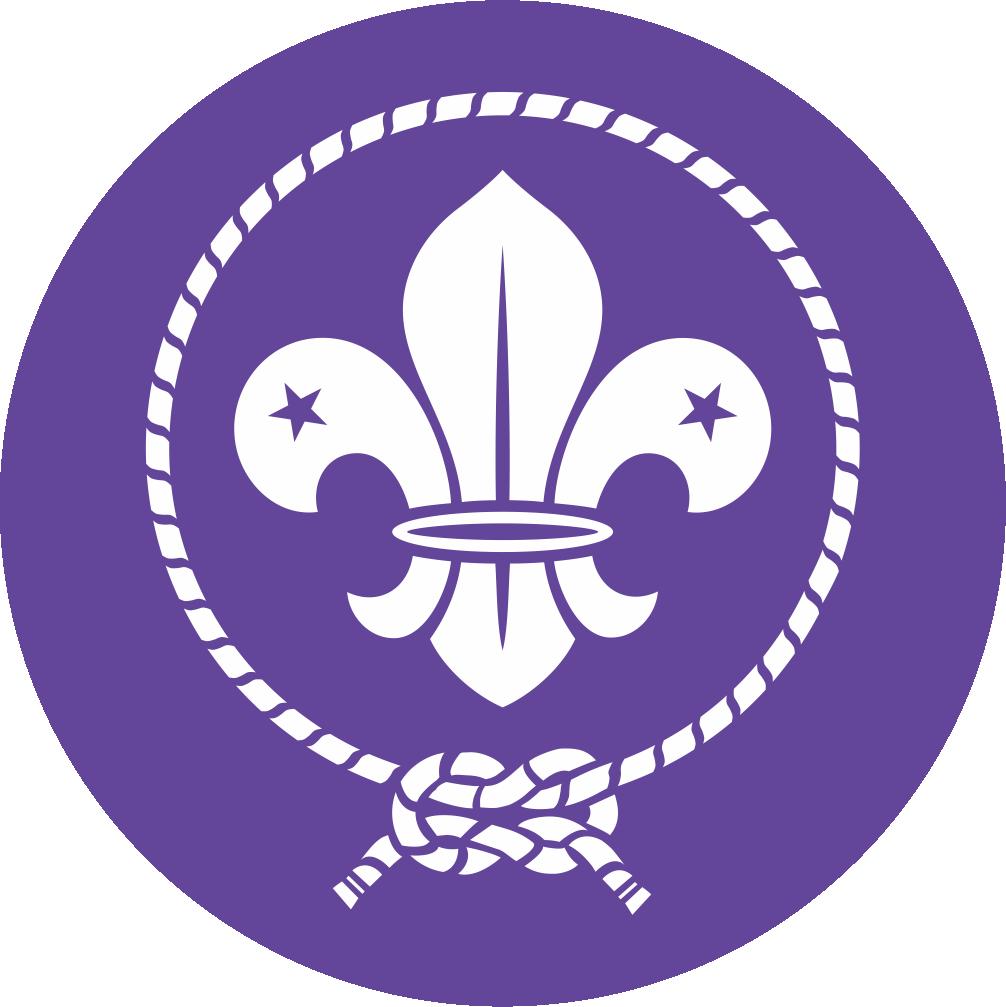 Logo Wosm Hd