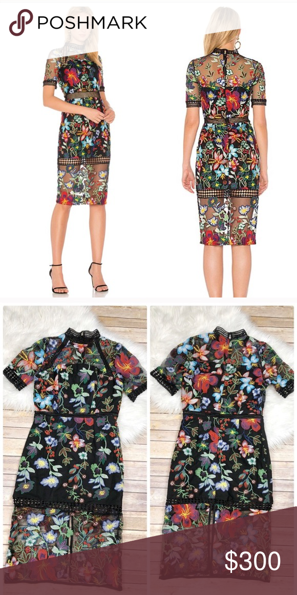 acc0861569c5 Vone Floral Embroidered Lace Sheath Dress Anthropologie Dress. Also sold on  revolve Size : small Length: 43in Width: 14.5in Pit to pit: 17in Brand new  with ...