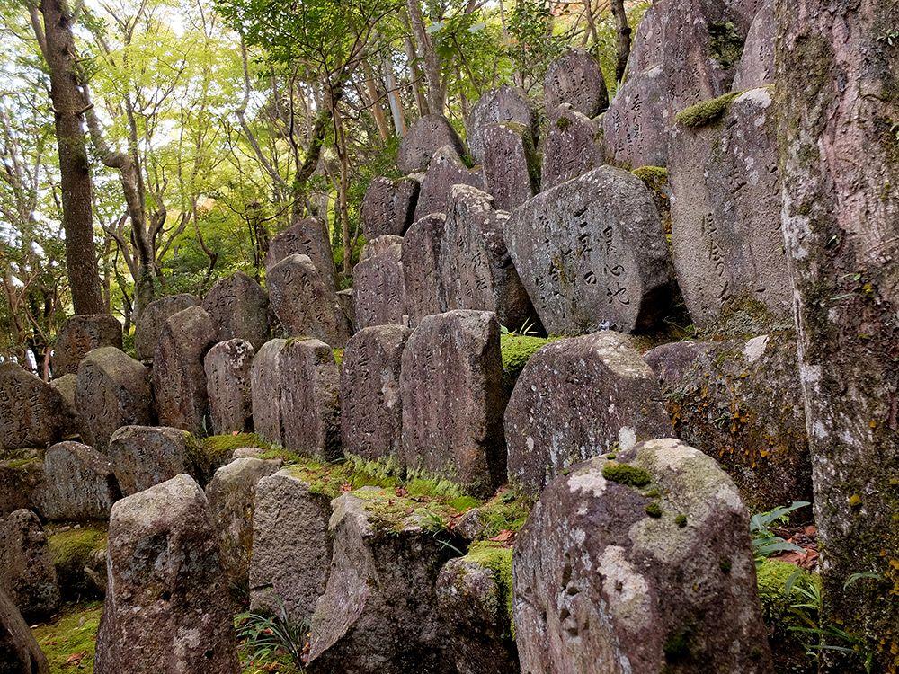 Mitaki et sa forêt magique (Hiroshima - #Japon) pierres et mousse