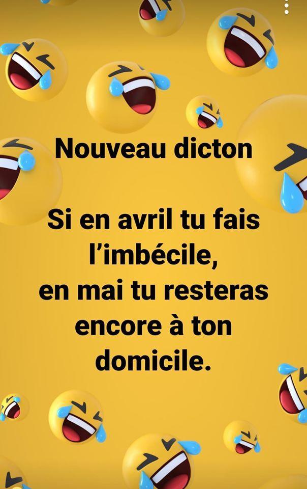 Citation Rigolote, Phrase Drole, Humour Drole, Citation Pensée, Blagues De Merde, Trucs Drôles, Santé Bien Être, Autre, Humour De Prof