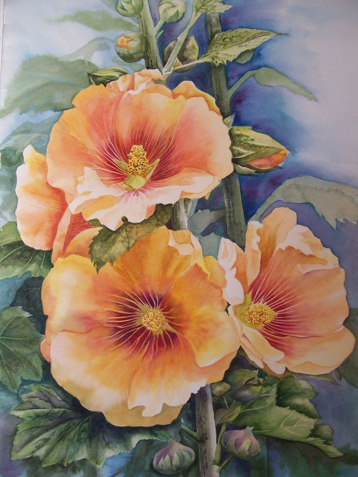 91 Best Hollyhocks Images On Pinterest Watercolors Watercolor