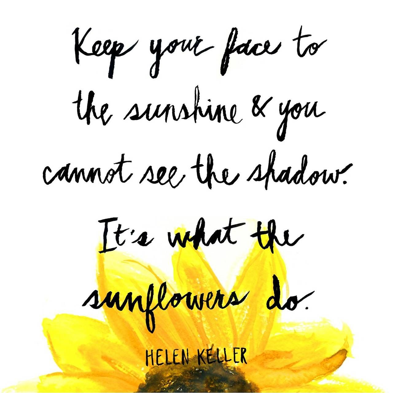 Its What The Sunflowers Do Fancy Phrases Quotes Sunflower