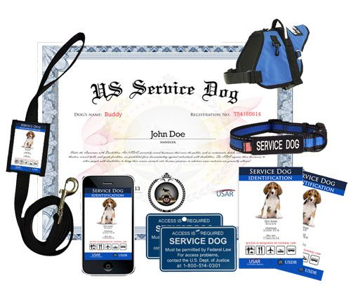 Service Dog Emotional Support Dog And Therapy Dog Registration Services And Supplies Service Dogs Emotional Support Dog Dog Training Obedience