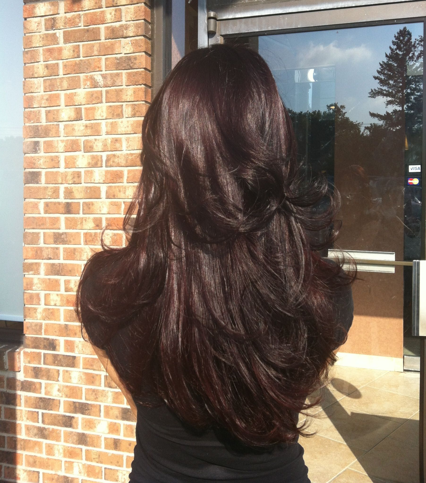 Dark brown with eggplant purple hue and long layers