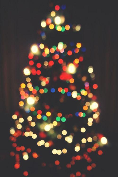 infamousgod \u201c Christmas Lights by Stefano Di Biagio \u201d natale2017