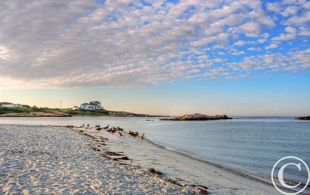Sunrise At Gooseberry Beach Newport Ri Beach Local City By The Sea Beach