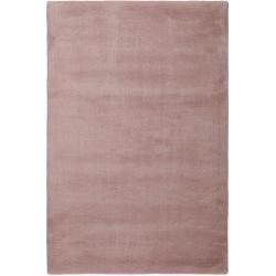 Photo of Carpets