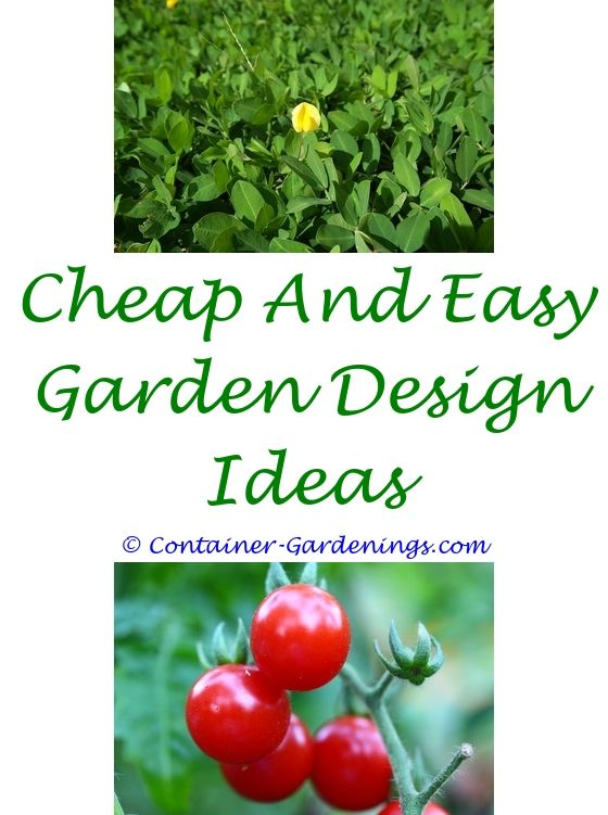 How To Grow Anything Container Gardening Tips U0026 Techniques   Green Garden  Fence Ideas.fall