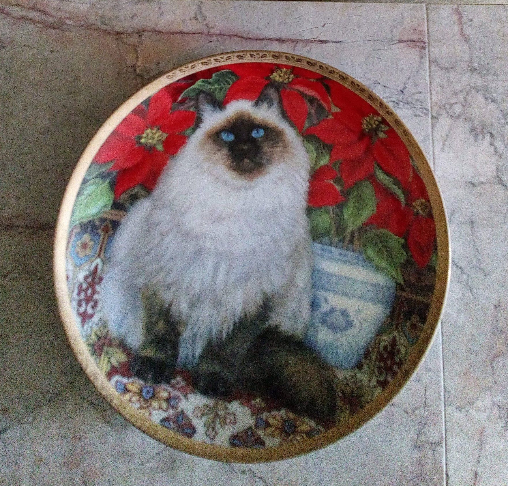 collector plate purrfect poinsettias cat christmas