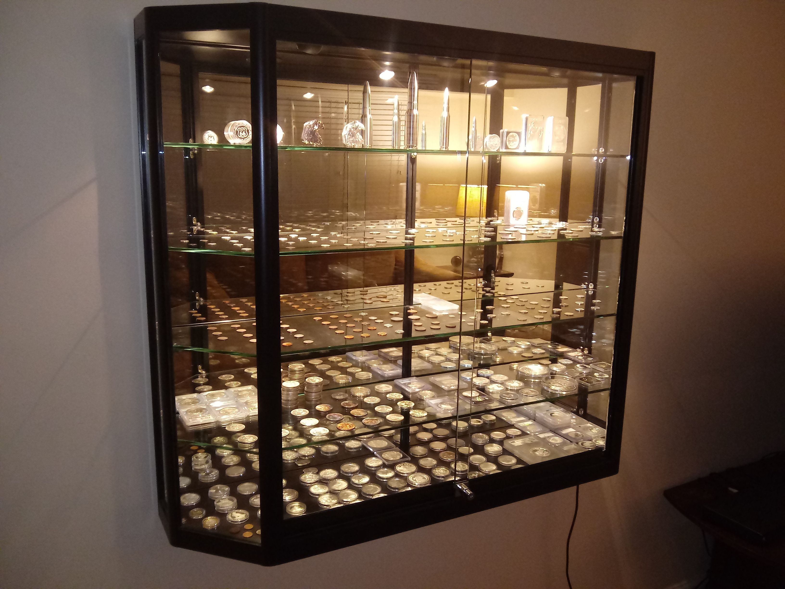 Coin Collector S Display Case Wall Mounted Display Case Tempered Glass Shelves Display Case