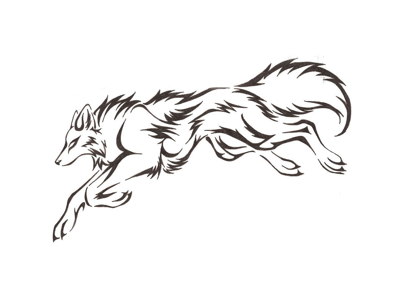 Wolf Outline Drawing  Cliparts