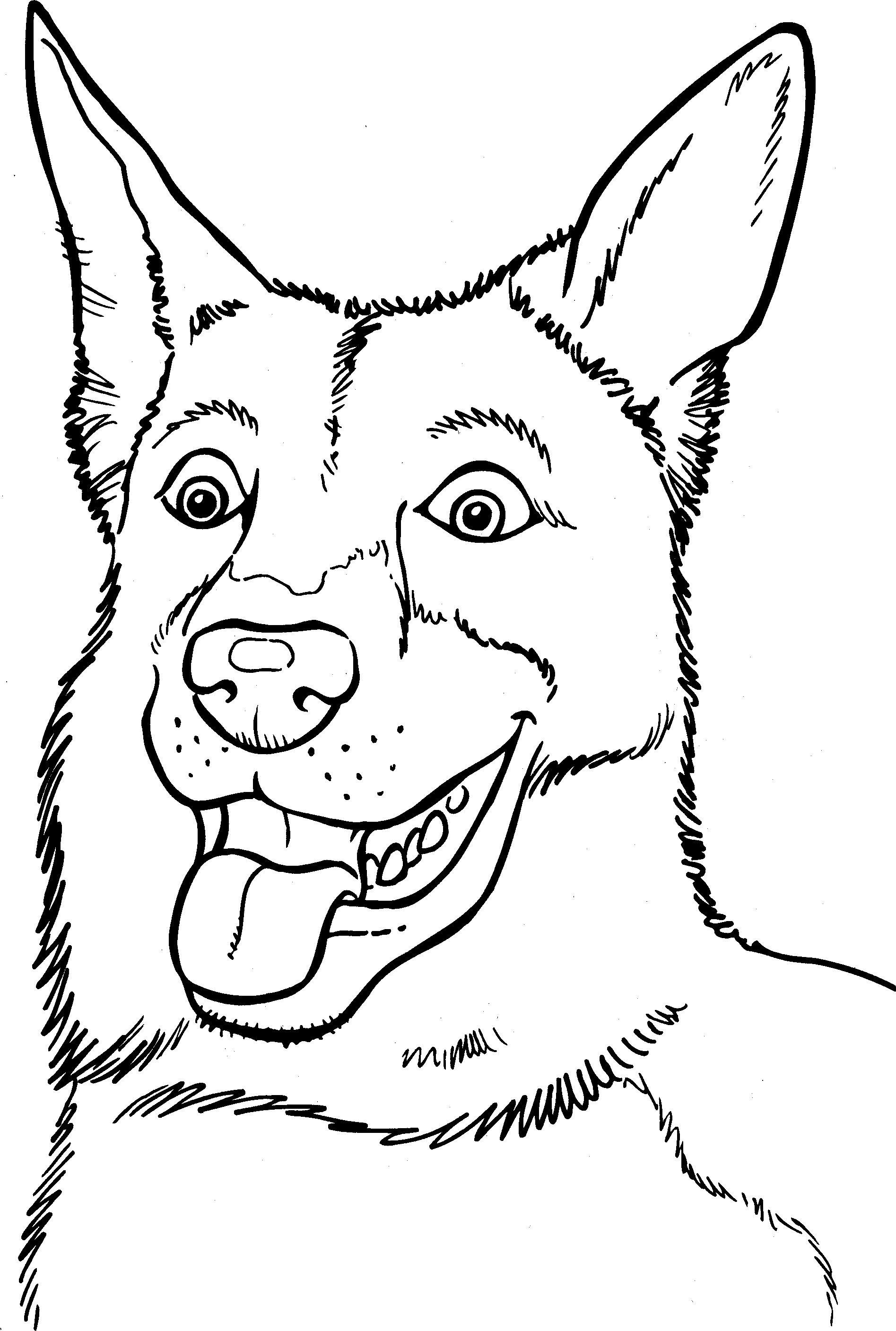 Honden Kleurplaat Animals Belgian Malinois Dog Pattern Dogs