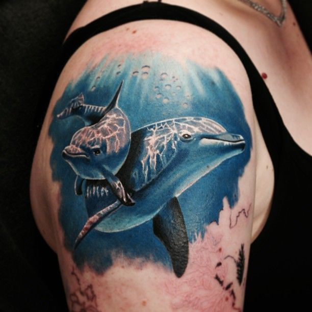 Super Adorable And Very Realistic Dolphin Tattoo In Progress By