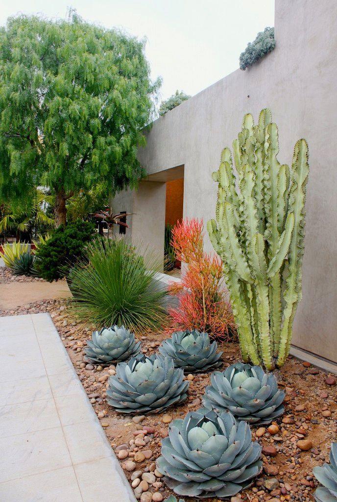 Japanese Zen Garden Design Ideas