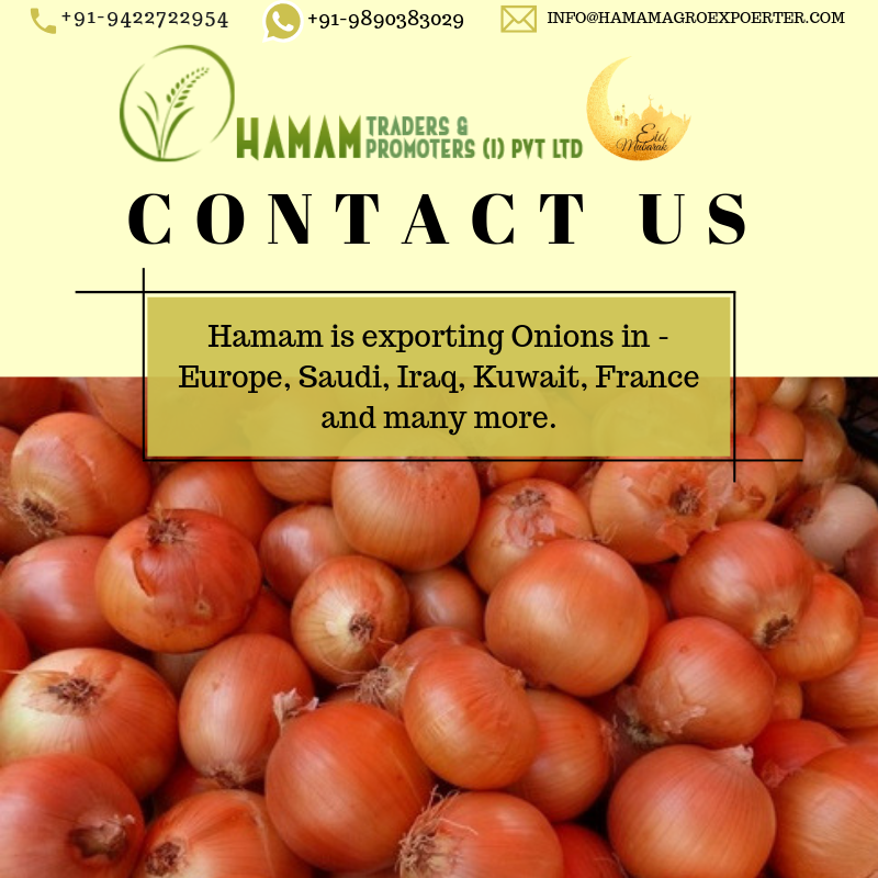 HAMAM is exporting ONIONS in the following countries - Saudi, Qatar