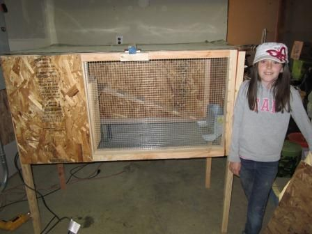 Best 25 rabbit hutch plans ideas on pinterest cages for for Diy hutch plans