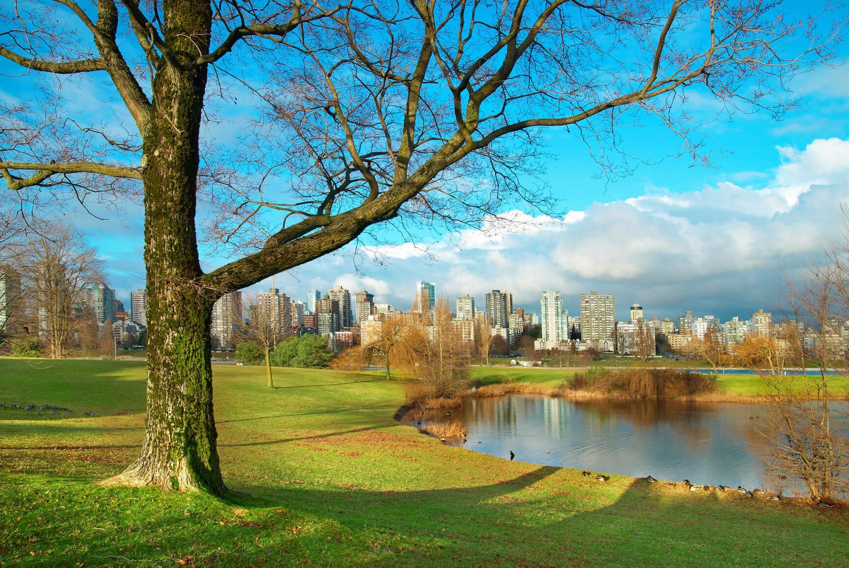 Cheap flights from Vienna, Austria to Vancouver, Canada