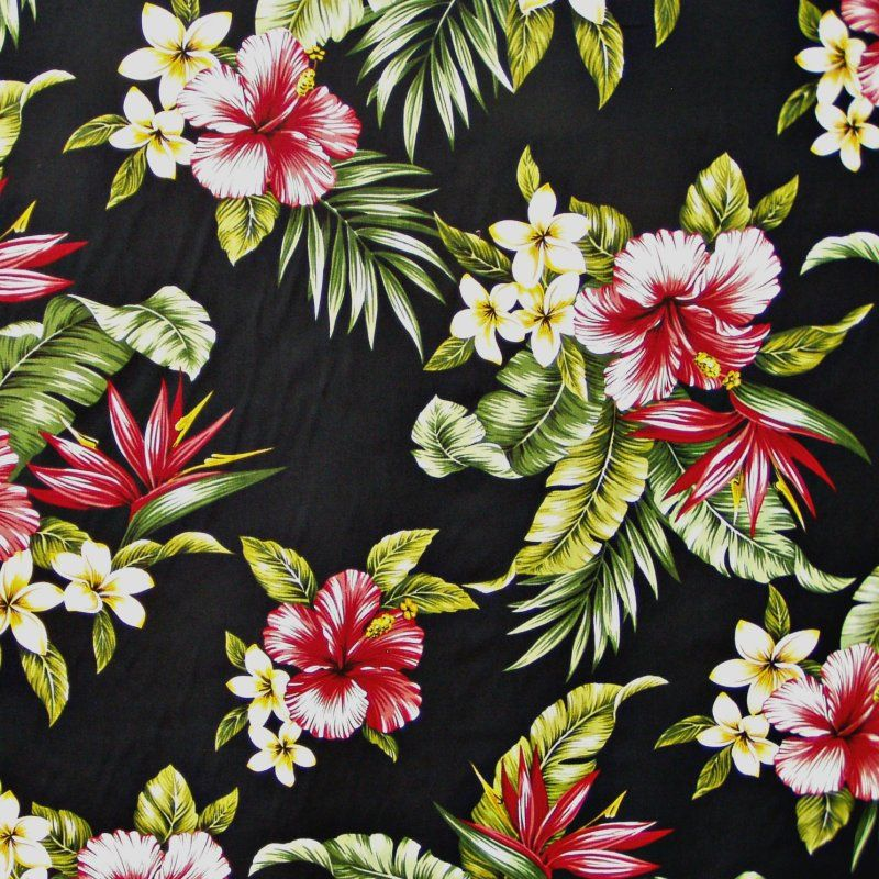 39 Awesome Tropical Print Wallpaper Images