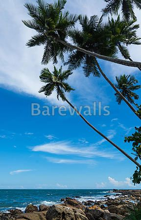"""Tropical rocky beach"" - Beach and Coastal Views posters and prints available at Barewalls.com"