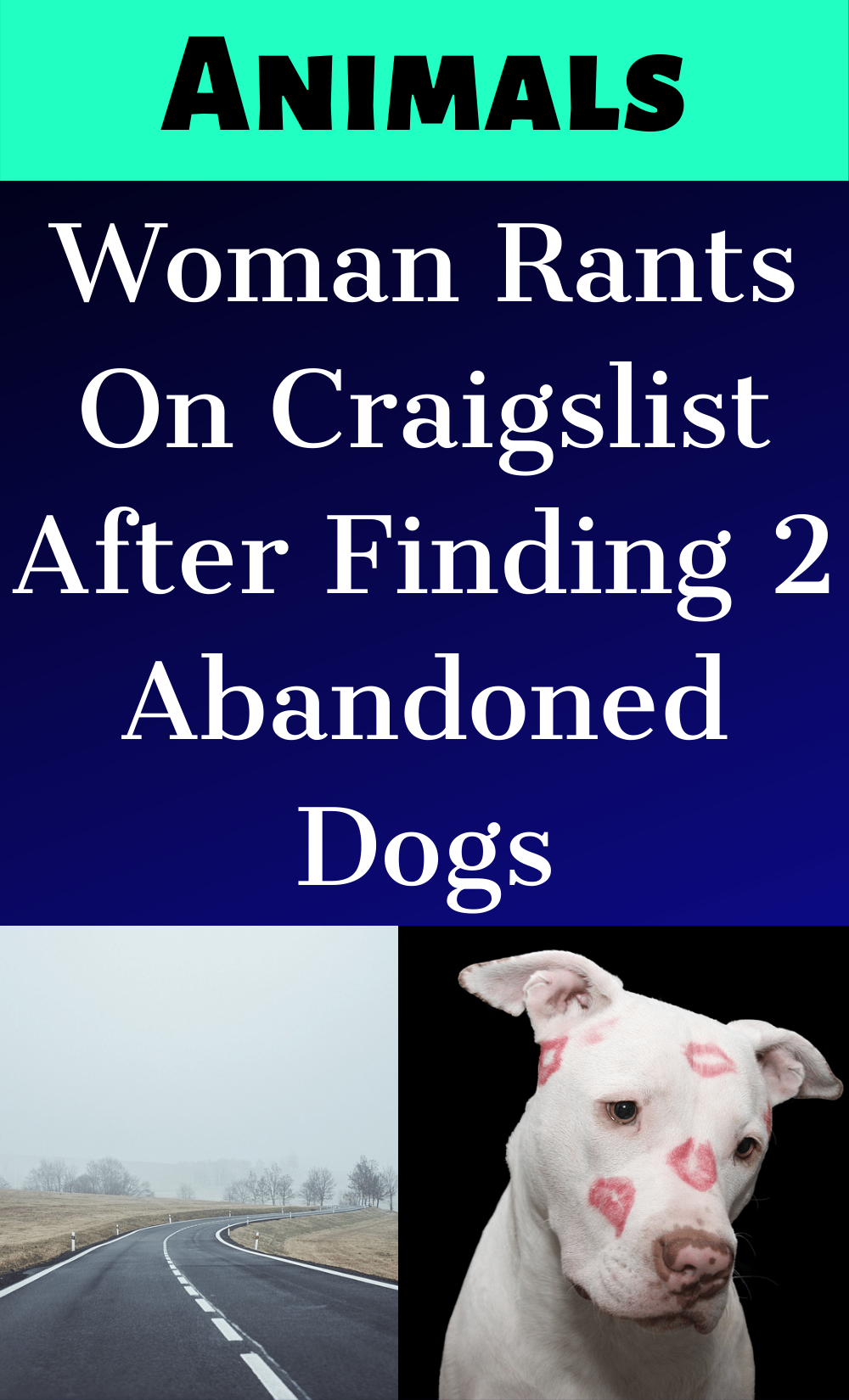 Woman Rants On Craigslist After Finding 2 Abandoned Dogs In 2020 Dogs Animal Lover Two Dogs