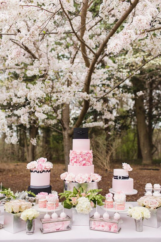 Pink and platinum elegant wedding ideas silver cake cake table ultra feminine and glamorous not sure you believe us these pink and platinum elegant wedding ideas created by are sure to swing you vote junglespirit Image collections