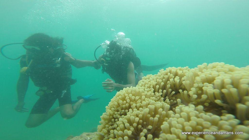 Andaman Nicobar Scuba Diving Packages