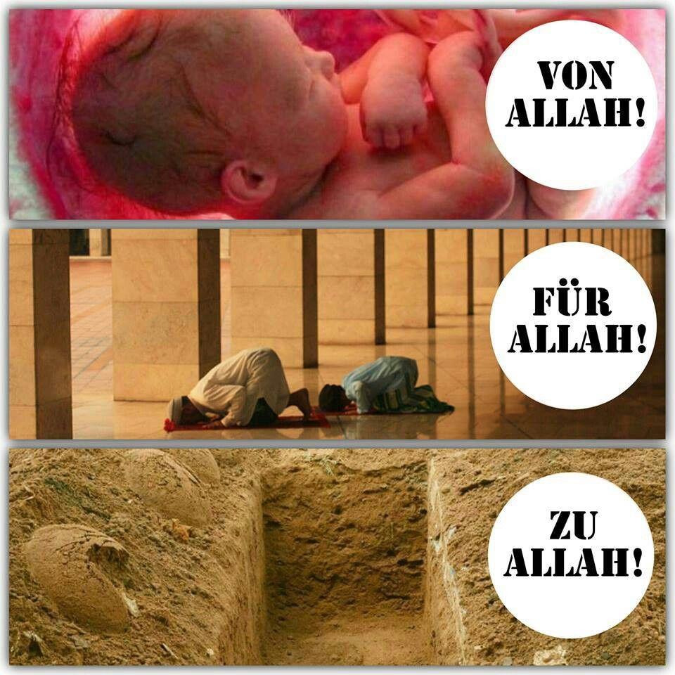 #vonallah #fürallah #zuallah