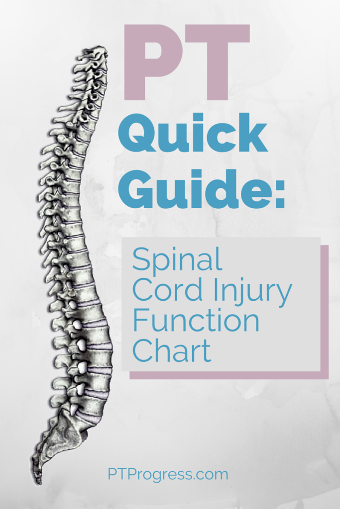 uncovering ways to repair spinal cord injuries Injuries to the spinal cord and peripheral nerves are  injury that today is beyond repair  minnesota that is uncovering the physiologic changes.