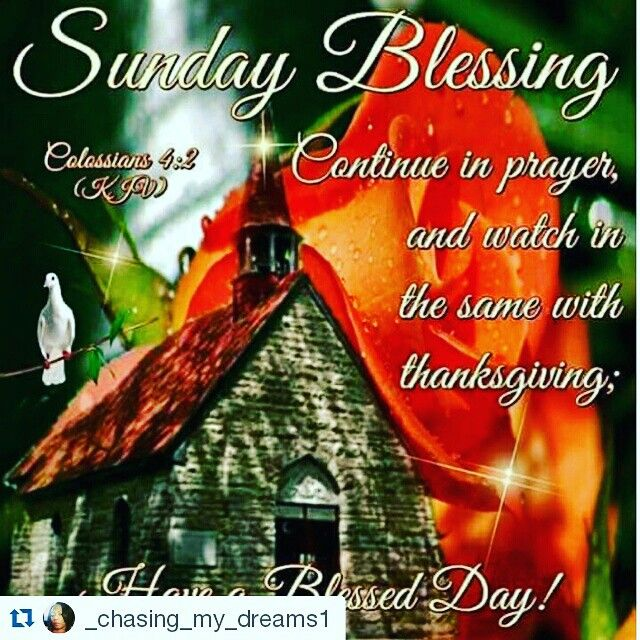 Pin by sheila boone on morning blessingsgood night blessings discover ideas about happy sunday quotes m4hsunfo