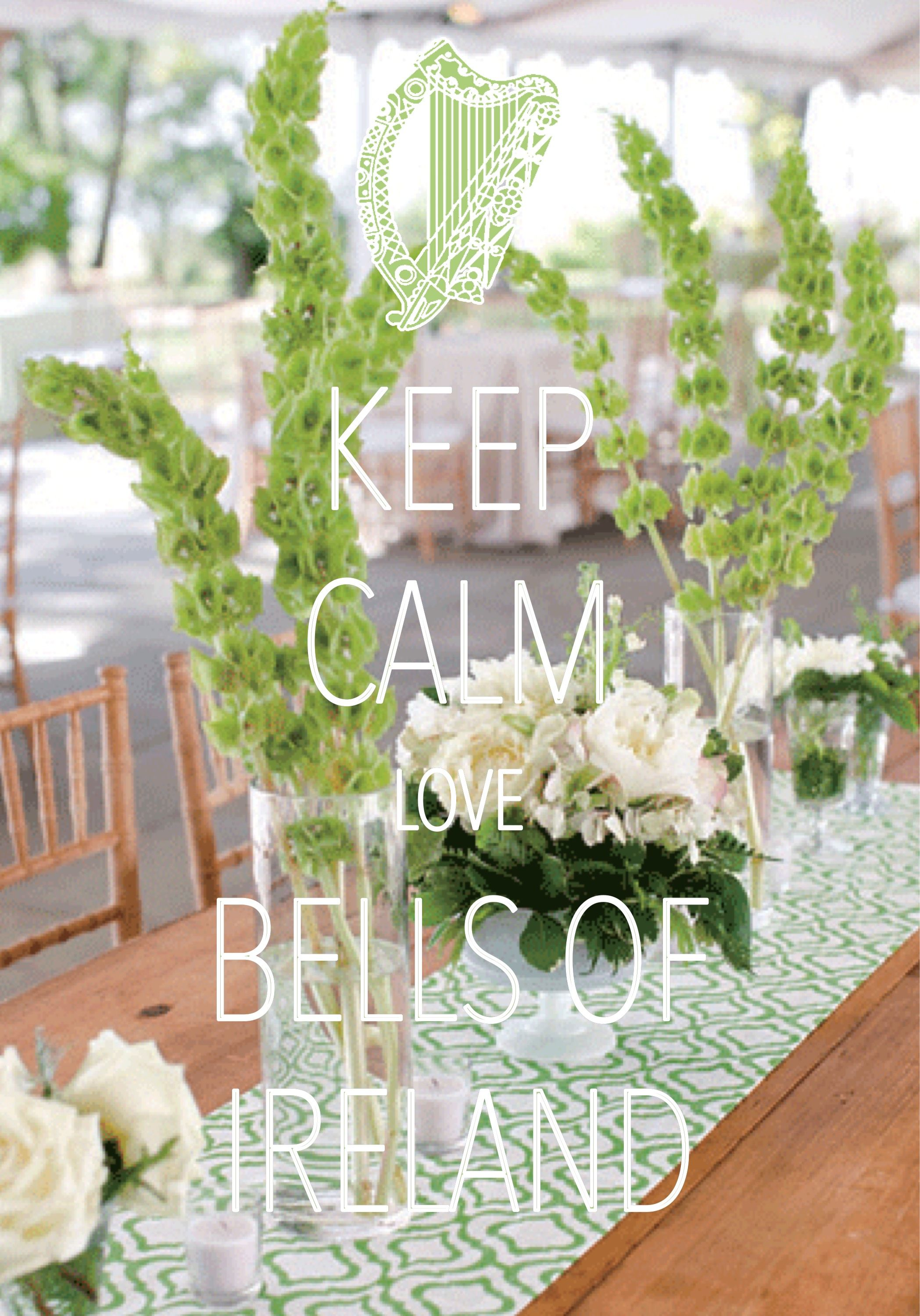 Keep Calm Love Bells Of Ireland Created With Keep Calm And Carry On For Ios Keepcalm Bellsofireland Keep Calm Pictures Keep Calm And Love Keep Calm