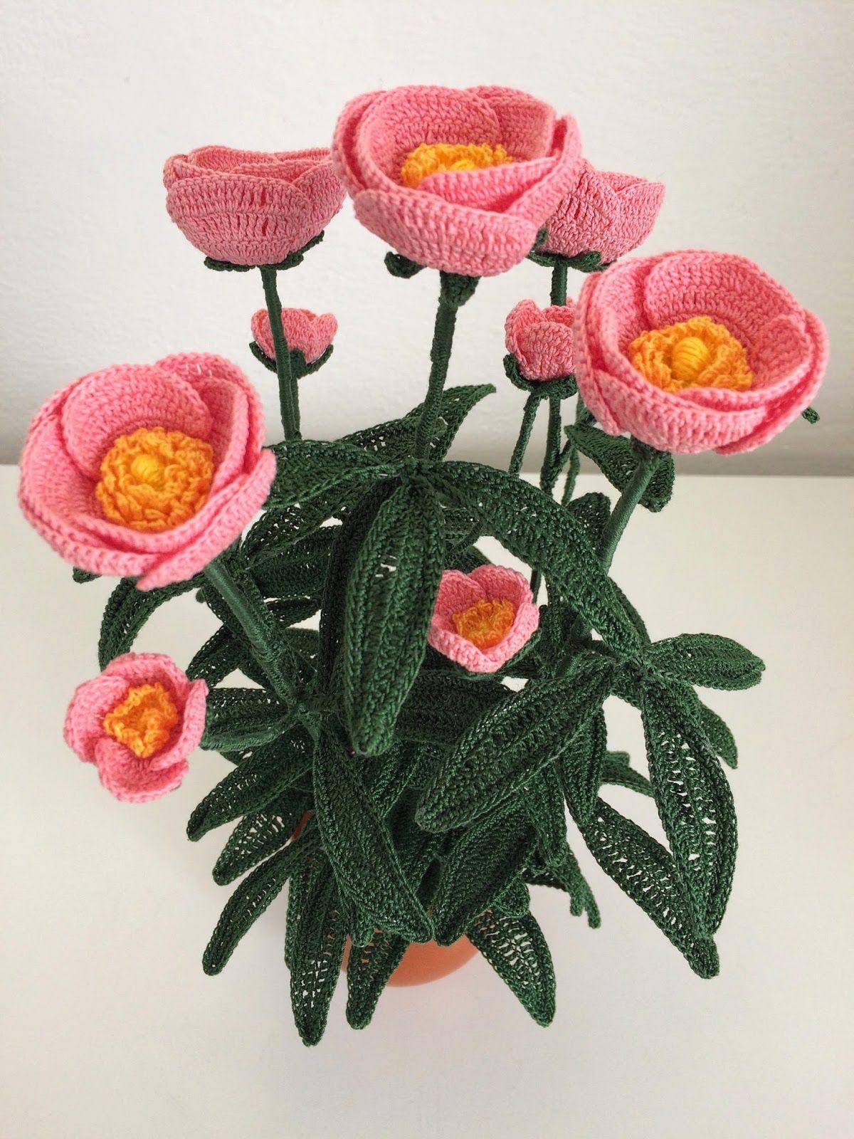"""Da noi chiamata """" Sa Rosa de Monti"""", una bellissima rosa senza spine ..."""