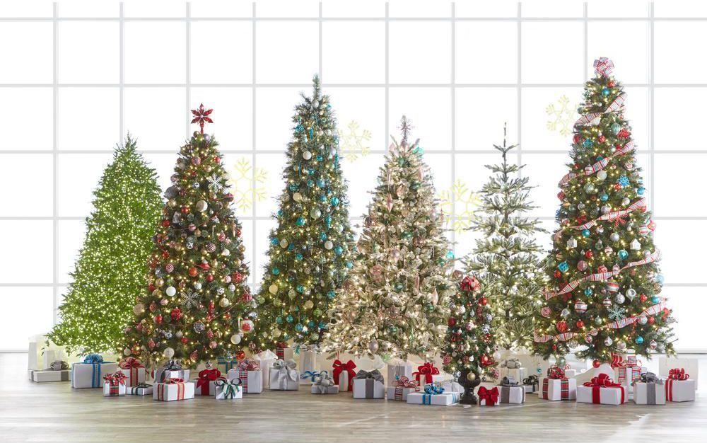 This Christmas Tree Is 10 Times Brighter Than The One In Your Living Room Halloween Decorations Apartment Martha Stewart Christmas Christmas Tree Sale