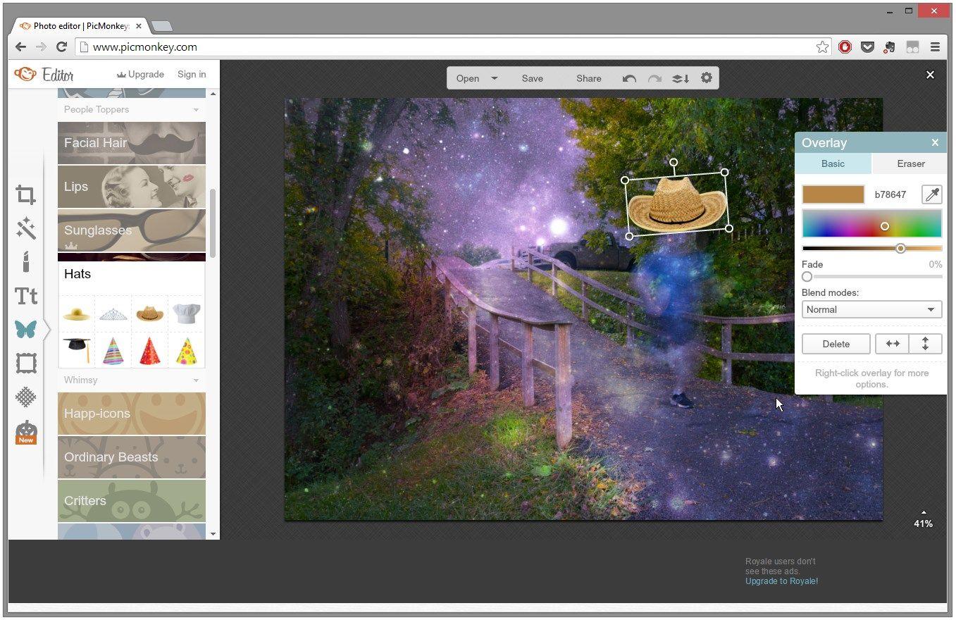 PicMonkey Photo editing, Software, Overlays