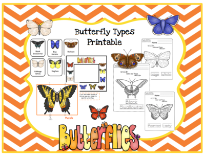 Butterfly Types Printable from Preschool Printables on ...