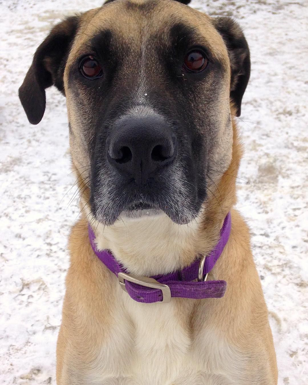 Cute camper alert! This handsome guy is Walter! (With