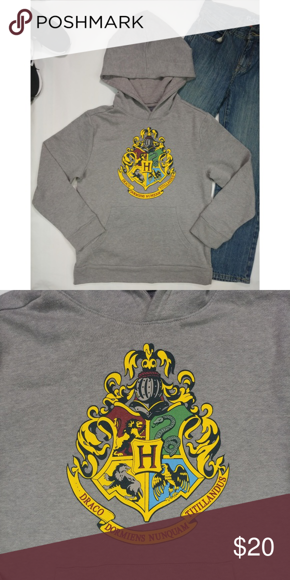 Harry Potter Gryffindor Crest Youth Pull Over Hoodie Black