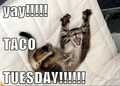 TNT TACO TUESDAYS!! YAY!! | Work memes, Memes