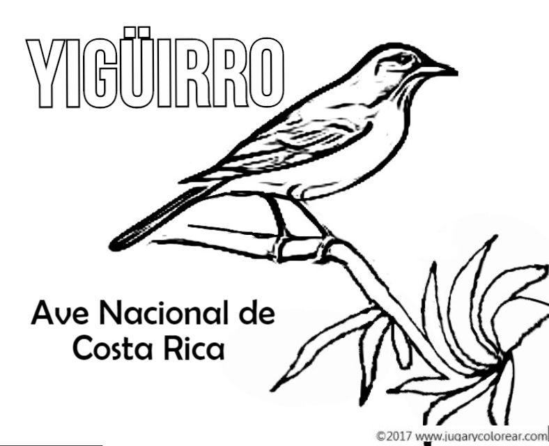 Ave Nacional De Venezuela Para Dibujar | image result for mapa escudo nacional y bandera de costa rica costa rica