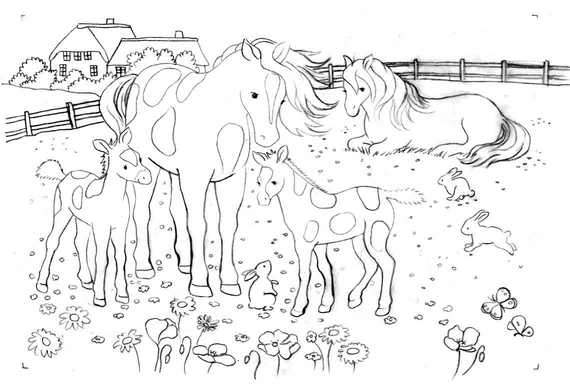Pferde Ausmalbilder Horse Coloring Pages Animal Coloring Pages Animal Coloring Books