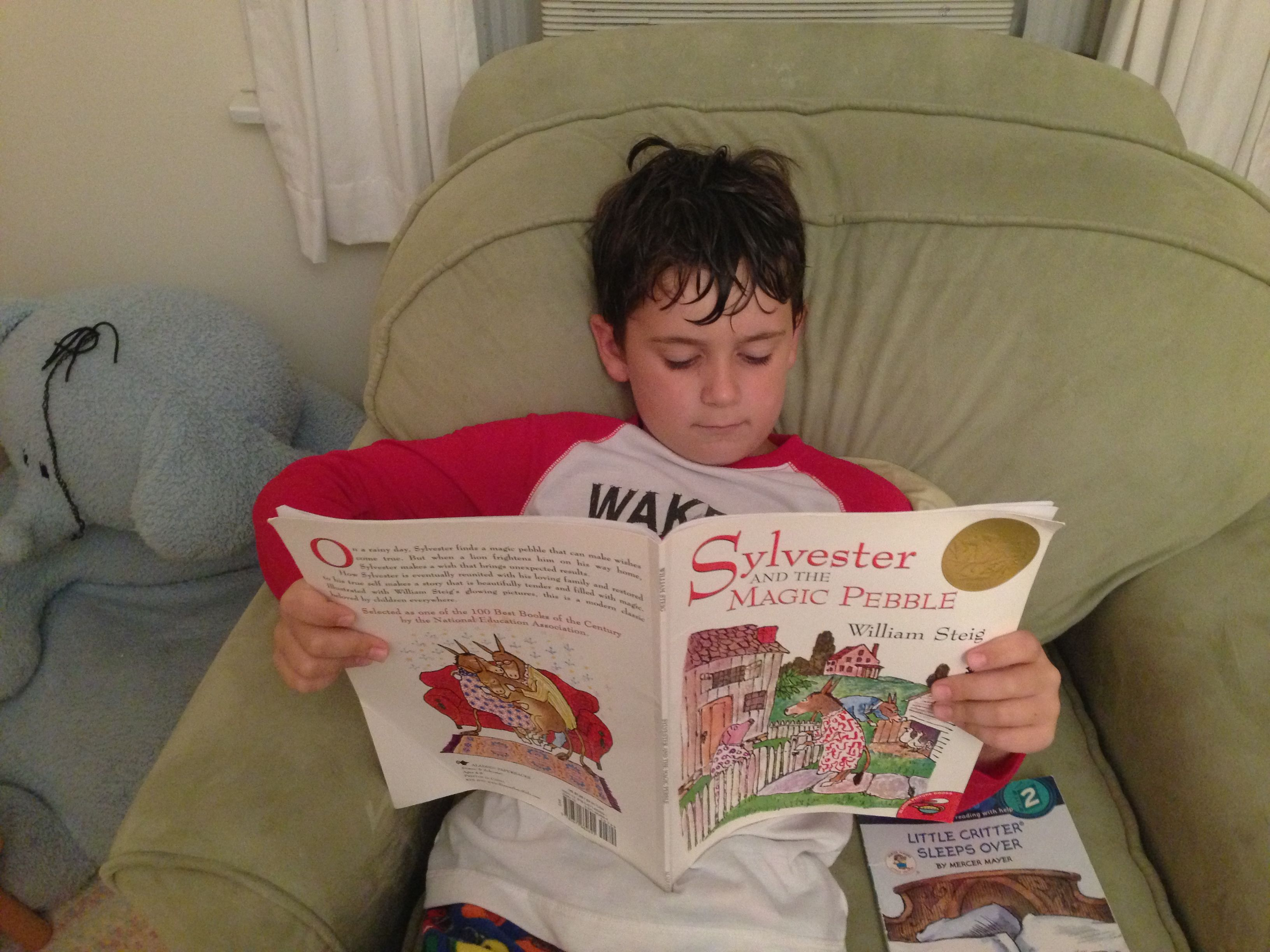 George Reads From Sylvester And The Magic Pebble By