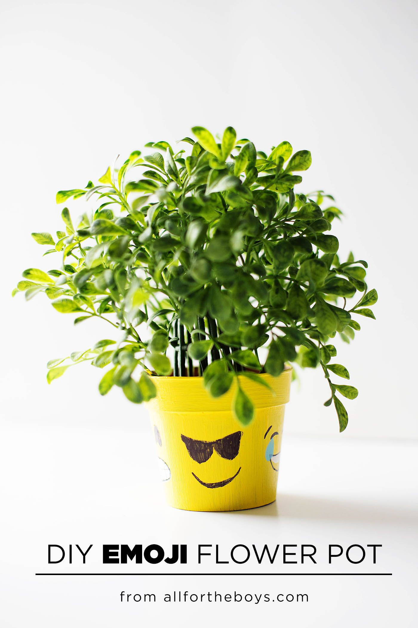 Diy Emoji Flower Pot How Are You Feeling Today All For The Boys Emoji Flower Flower Pots Emoji