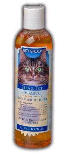 Biogroom Cat Flea And Tick Conditioning Shampoo 8ounce Read More Reviews Of The Product By Visiting The Link On The Image Thi Cat Fleas Fleas Cat Shampoo
