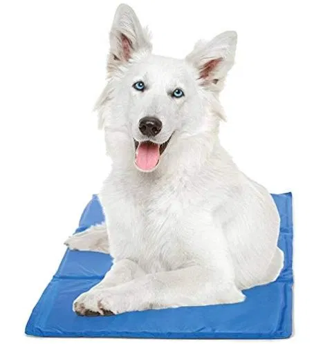 Hugs Pet Products Chillz Pressure Activated Pet Cooling Gel Pad With Images Dog Cooling Mat Dog Bed Mat Orthopedic Dog Bed