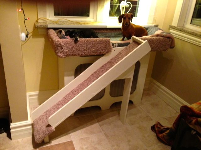 Dog Window Perch With Ramp It Is Built Over A Radiator So My Mini