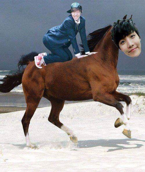 J Horse Bts Memes Horse Meme Memes