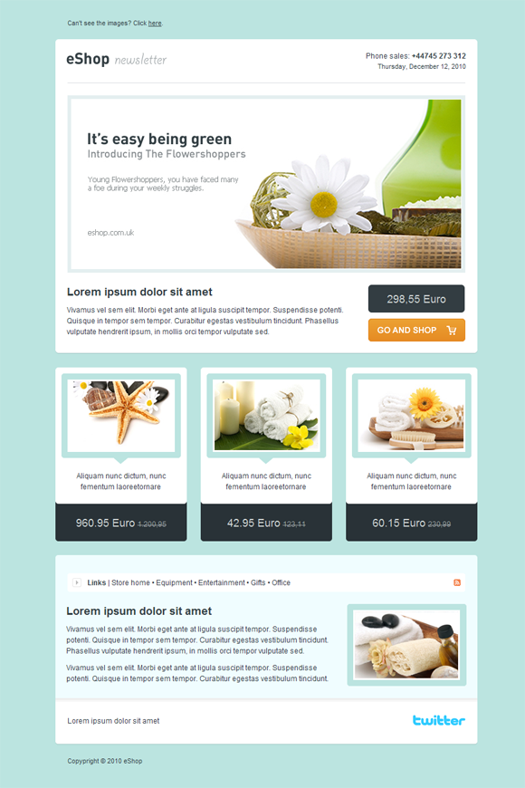 pressroom-email-newsletter-template-preview.jpg (500×765) | Design ...