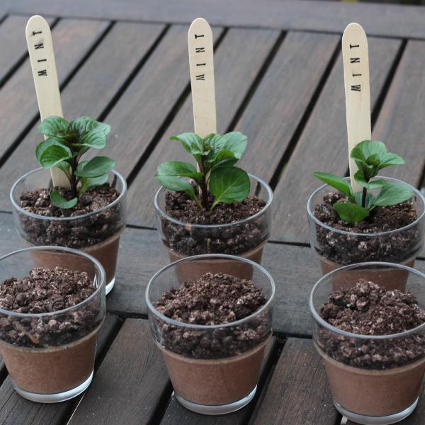 Oreo Dirt Desserts Or Chocolate Mint Puddings Recipe