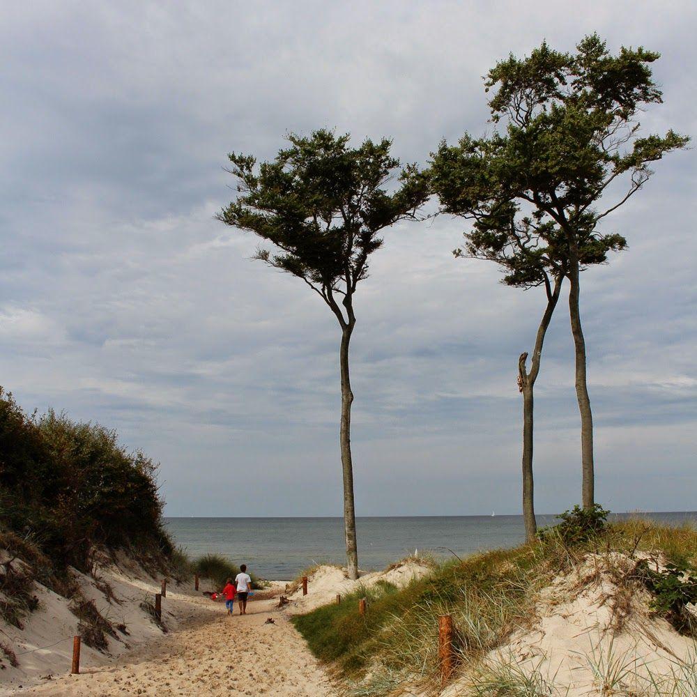 Nochmal Strandbilder ....   Strandbilder, Ostsee, Strand bilder