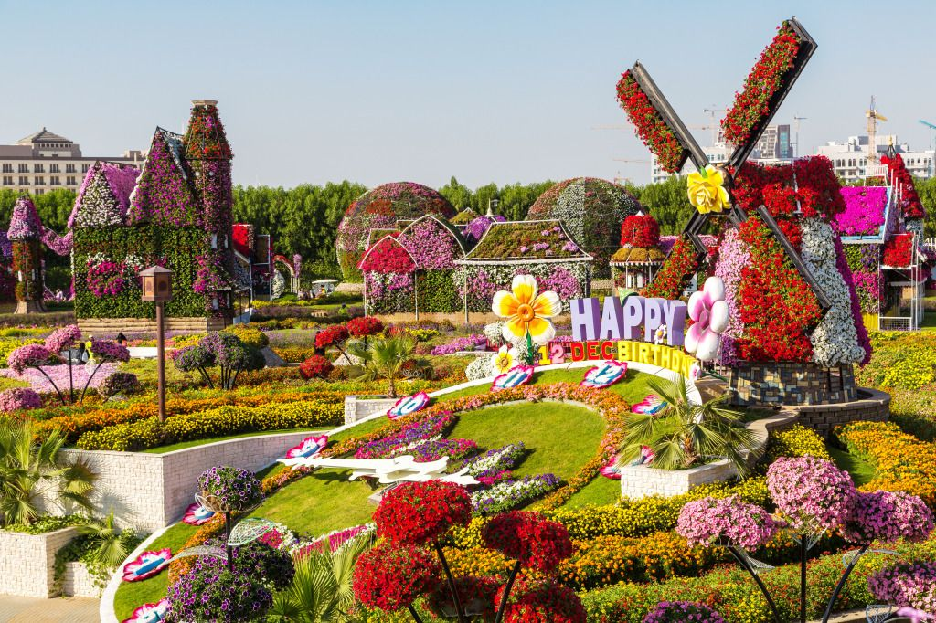 Dubai Miracle Garden, UAE jigsaw puzzle in Flowers puzzles